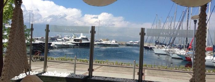 Marina Salute Cafe & Restaurant is one of Hasan 님이 저장한 장소.