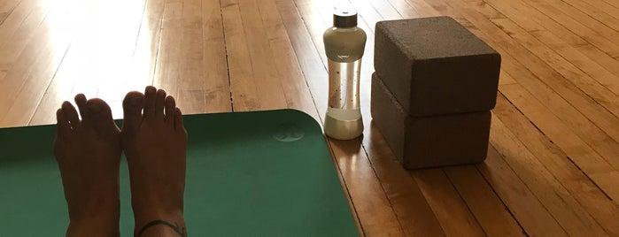 Kindness Yoga is one of Locais curtidos por Usaj.