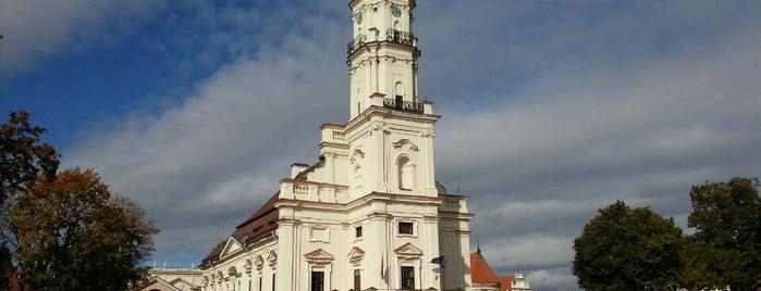 Kauno rotušė is one of Вильнюс.