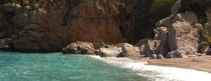Paliokastro Beach is one of สถานที่ที่ bahar ถูกใจ.