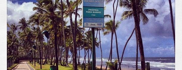 Praia de Buraquinho is one of Lugares Ya Conocidos.