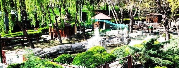 Keçiören Evcil Hayvanlar Parkı is one of Ankara GEZ.