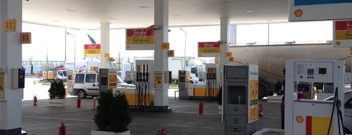 Shell is one of Posti che sono piaciuti a Emre Çağlar.