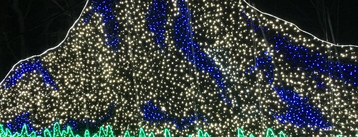 Zoo Lights is one of Lugares favoritos de John.