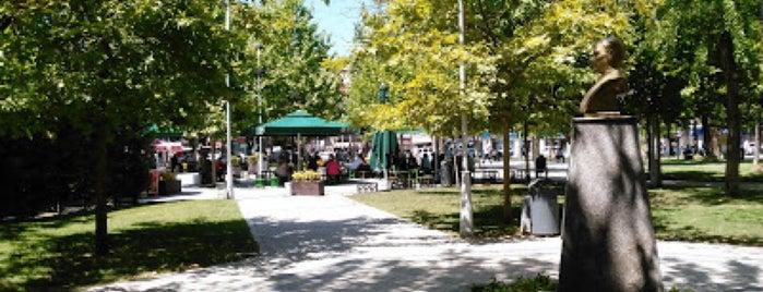 Atatürk Parkı is one of ♏️UTLU'nun Beğendiği Mekanlar.