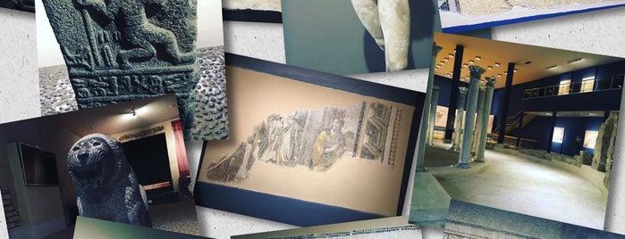 Hatay Arkeoloji Müzesi is one of ♏️UTLU'nun Kaydettiği Mekanlar.