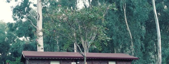 Lemonpark House is one of Posti che sono piaciuti a Haydar.