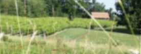 Devault Vineyards is one of The Virginia Wine and Cigar Trail.