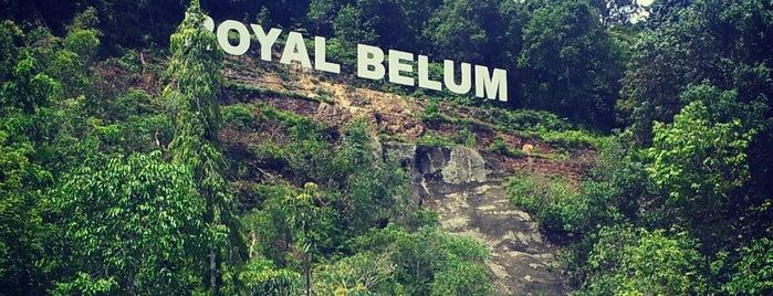 Belum Rainforest Resort is one of Locais curtidos por Rahmat.