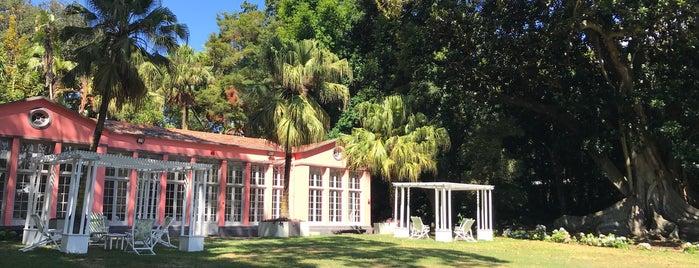 Jardim José do Canto is one of Ilha de São Miguel.