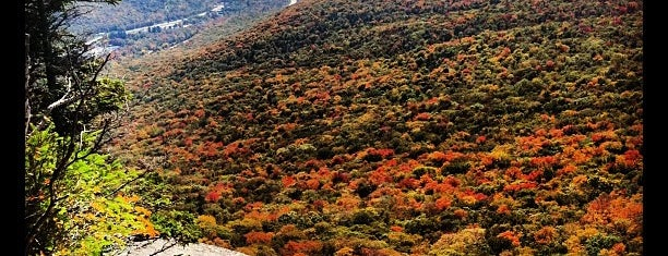 Franconia Notch State Park is one of NH.