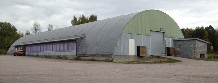 Riihimäen Golfhalli is one of Golf winter training centers in Finland.