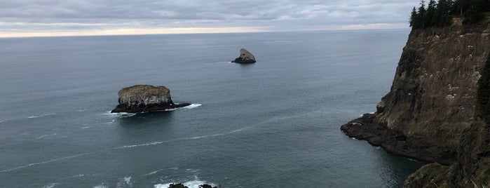 Cape Meares State Park is one of สถานที่ที่ Al ถูกใจ.