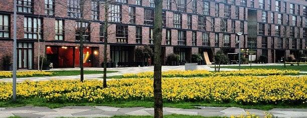 Funenpark is one of Amsterdam.