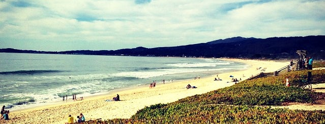Half Moon Bay State Beach is one of Locais curtidos por Mei.