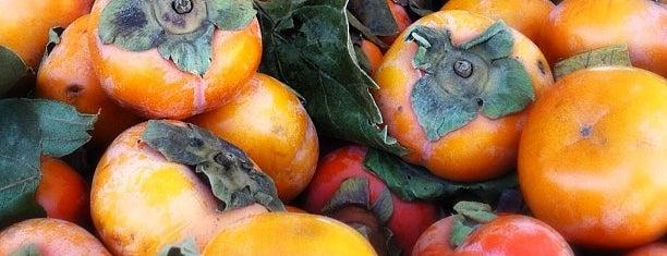 Santa Rosa Farmers Market is one of Lieux qui ont plu à Lynette.