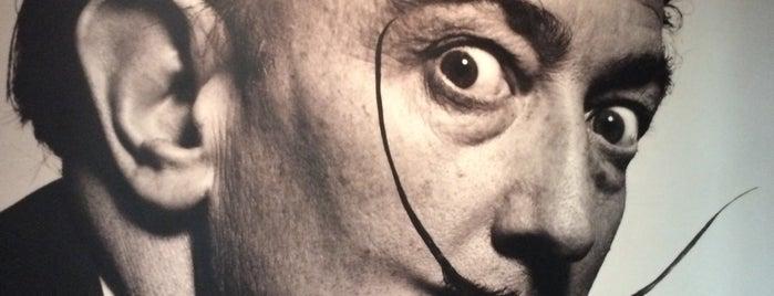 Exposição Salvador Dalí is one of João R 님이 좋아한 장소.