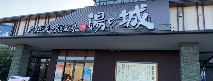 大垣天然温泉 湯の城 is one of Tempat yang Disukai Masahiro.