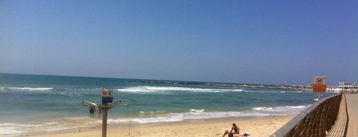 Frishman Beach is one of Tlv.