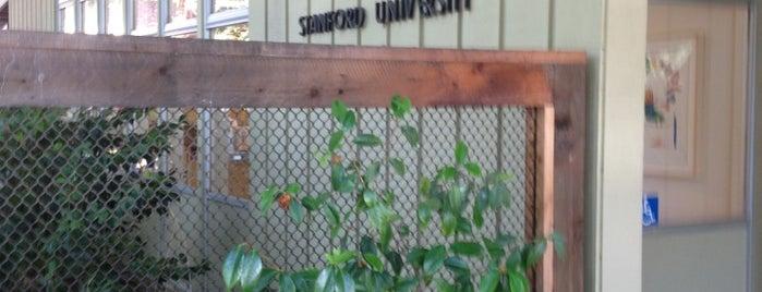 Bing Nursery School is one of Tempat yang Disukai Sevil.