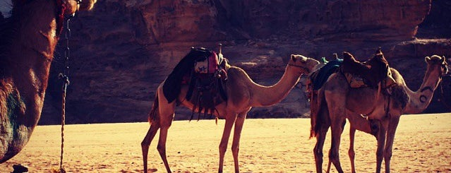 Wadi Rum Camel Camp is one of Locais curtidos por Emilio.