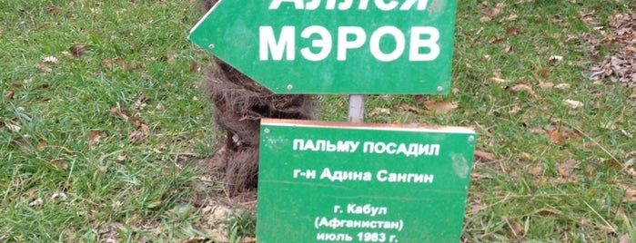 Аллея Мэров is one of Сочи @ chaluskin.ru.