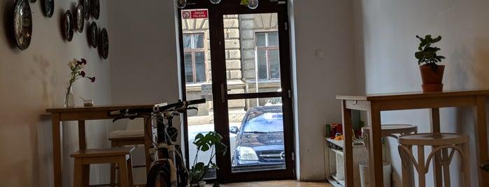 Pies Pianista is one of krakow restaurants.