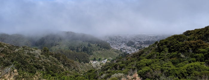Montara Mountain Trail is one of South SF.