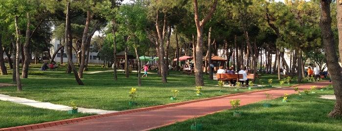 Fenerbahçe Orduevi is one of Orte, die didem gefallen.