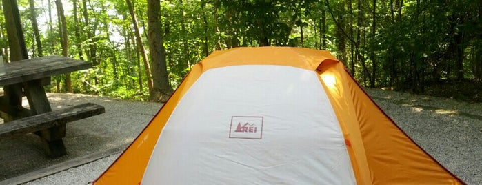 Zilpo Campground is one of Jerry 님이 좋아한 장소.