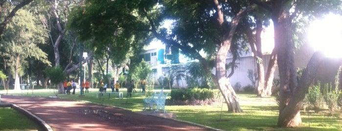 Parque México is one of สถานที่ที่ Leticia ถูกใจ.