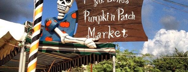 Mr. Bones Pumpkin Patch is one of Lugares favoritos de S.