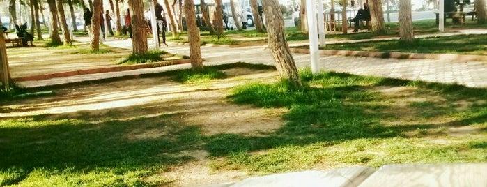 Yenişehir Karayolları Parkı is one of Zyn'ın Beğendiği Mekanlar.