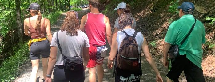 Tusten Mountain Trail is one of Around Narrowsburg.