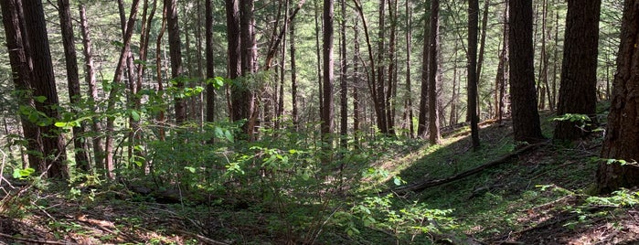 Six Rivers National Forest is one of National Recreation Areas.