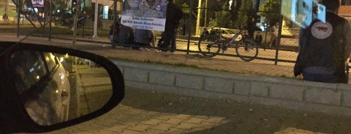 Erenler Genç Parkı is one of Ekremさんのお気に入りスポット.