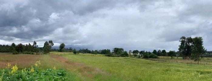 Republic of Kenya | Jamhuri ya Kenya is one of Tempat yang Disukai Millicent.