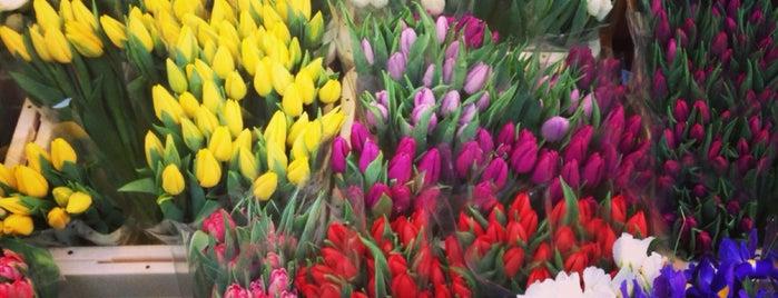 Columbia Road Flower Market is one of Posti che sono piaciuti a Claudia.