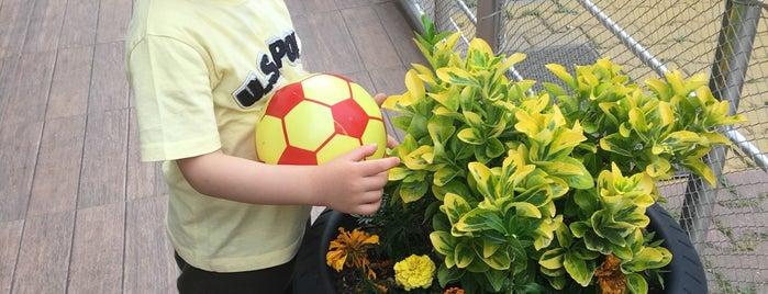 Mariposa for kids is one of Çocuk Oyun Mekanı.