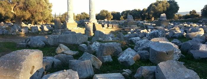 dionysos tapınağı is one of cizmecikedi : понравившиеся места.
