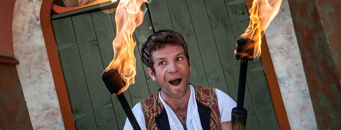 New York Renaissance Faire is one of NYC-Toronto Road Trip.