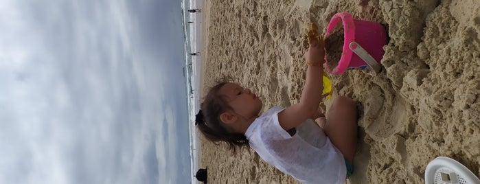 Praia do Novo Campeche is one of Santiago'nun Beğendiği Mekanlar.