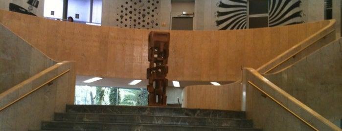 Museo de Arte Moderno is one of Museos Ciudad de México.