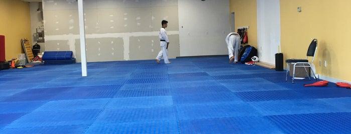Champion Taekwondo is one of Tempat yang Disukai Kevin.