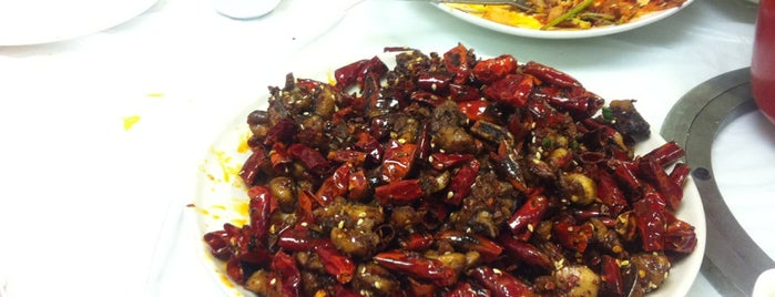 Szechuan Delicious Restaurant is one of สถานที่ที่บันทึกไว้ของ Dat.