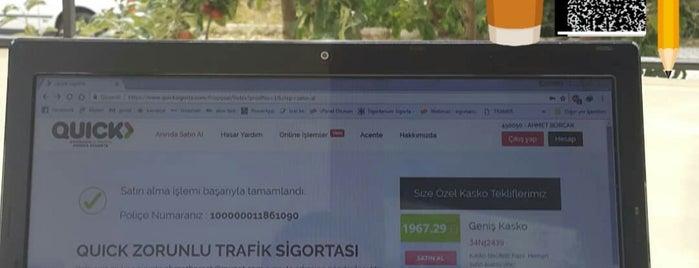 Esma Çetin Yazlıkları 🌳💤⛄ is one of Locais curtidos por Ahmet.