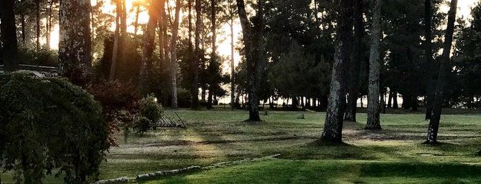 Club de Golf La Toja is one of Locais curtidos por José Luis.