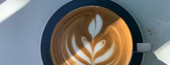 WWDC Coffee 2019