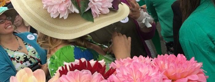 Humboldt County Fairgrounds is one of Nora : понравившиеся места.