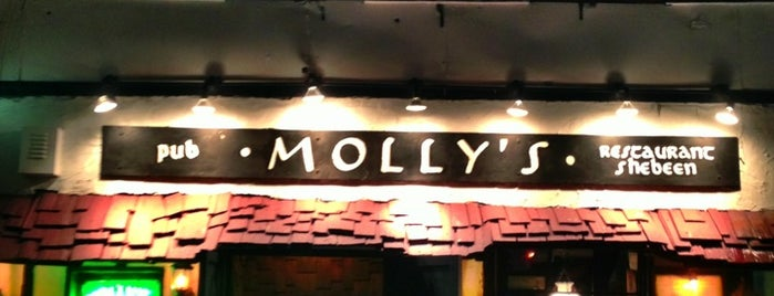 Molly's Shebeen is one of Bars with Fireplaces.